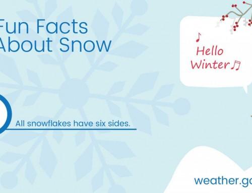 Fun Fact About Snow #1