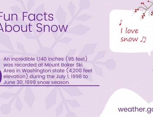 Fun Fact About Snow #2