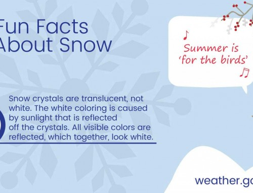 Fun Fact About Snow #4