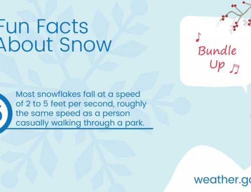 Fun Fact About Snow #5