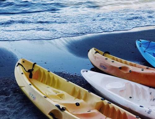 Village Kayak Auction