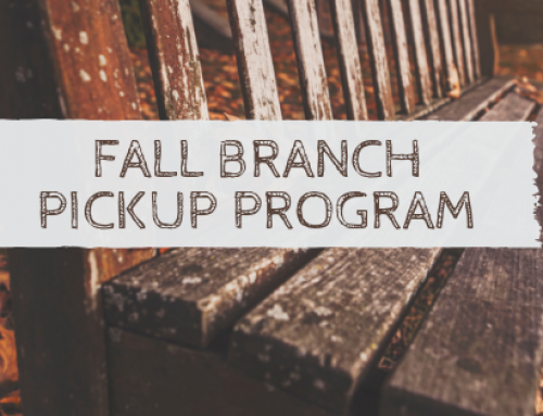 2018 Branch Pick Up Schedule