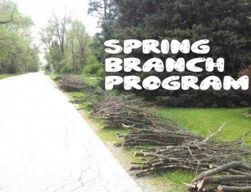 2019 Spring Branch Program